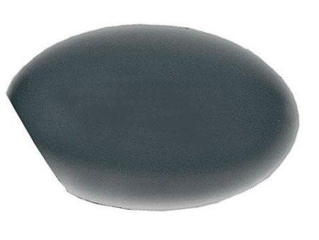 Espejo Carcasa Izquierdo Mini R50 - R53 (2001-2006)
